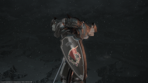 A miqo'te paladin from behind, wearing a story-relevant shield glamour.